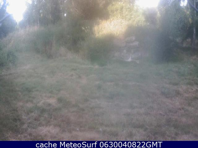 webcam Beenham Wolf Conservation South East