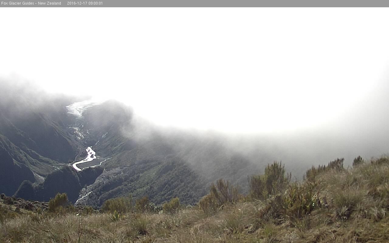 webcam Fox Glacier NZ Westland