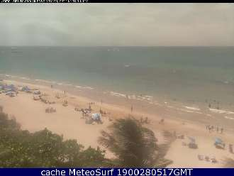 Webcam Pino Grove Isla Verde